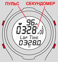 Пульсометр для бега экран